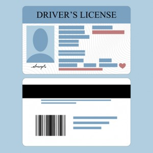 The design of California's immigrant drivers' licenses continues to be at the center of an ongoing controversy between DHS and some immigrant advocate groups.