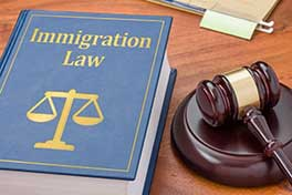 Image of Immigration Law book.
